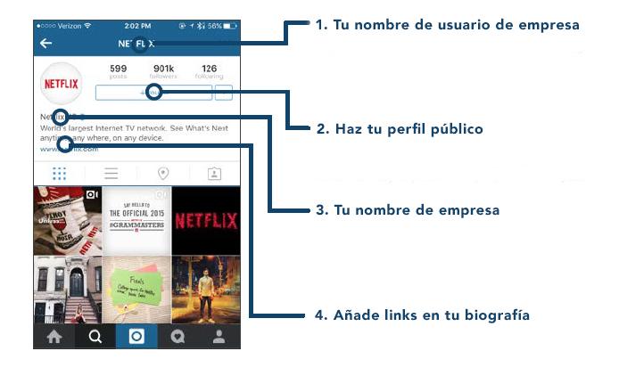 anatomia instagram