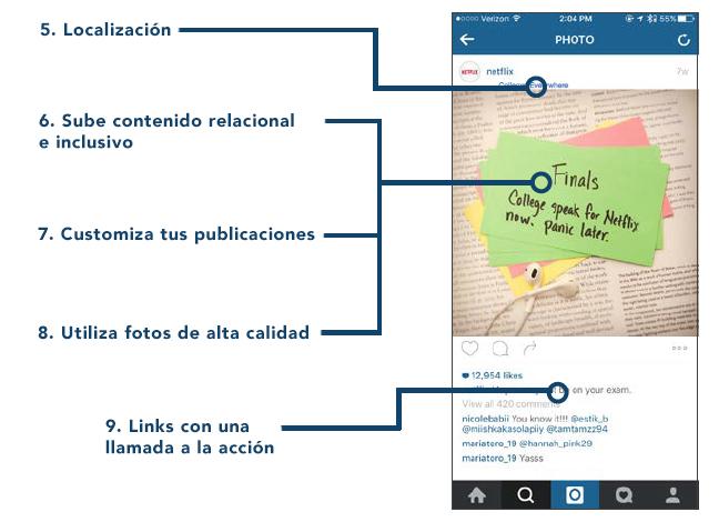 instagram anatomia